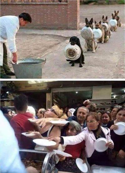 Boşuna demiyoruz eğitim şart diye. Bu dünyayı yiyi