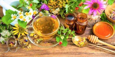 Kış Çayı nedir, nasıl Yapılır? Gribe karşı etkili